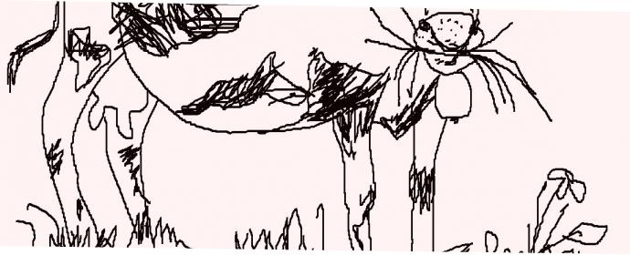 Die Kuh Muhfuß